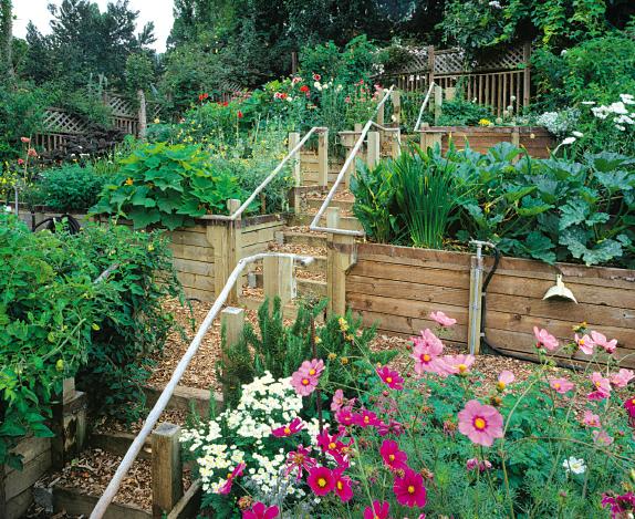 Hillside Terrace Gardens Grown By You